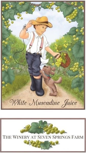 Product Image for Muscadine Juice