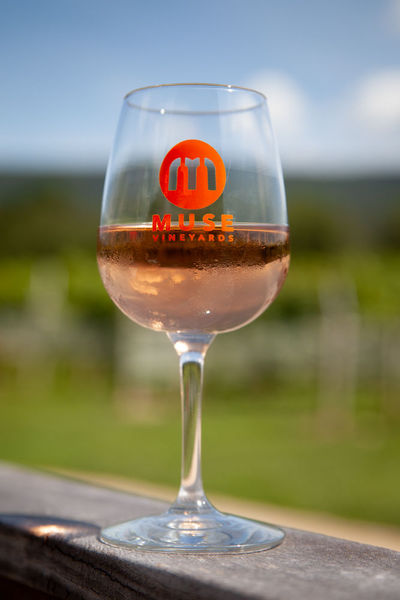 Product Image for Muse Logo Wine Glass
