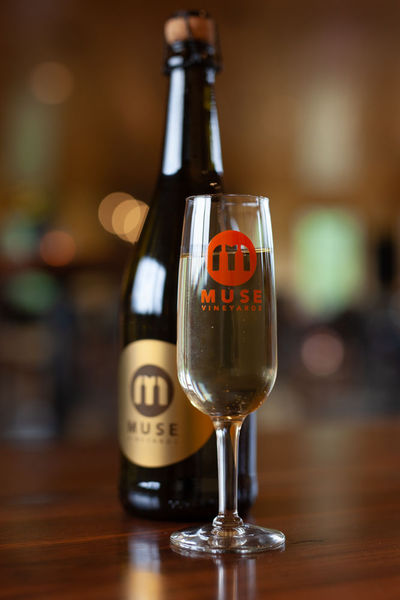 Product Image for Muse Logo Champagne Glass