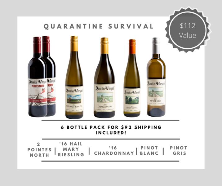 Quarantine Survival Pack